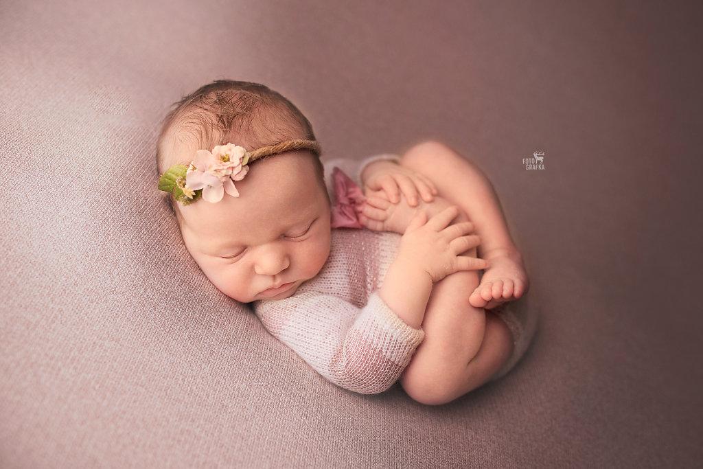 fotografia noworodkowa foto-grafka.eu